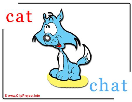 Cat - chat abc image Dictionnaire Anglais Français