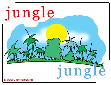 Jungle - jungle abc image dictionnaire anglais francais