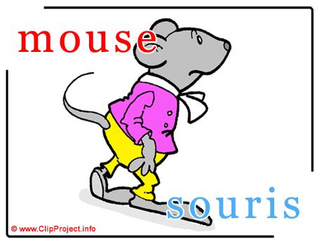 Mouse - souris abc image dictionnaire anglais francais