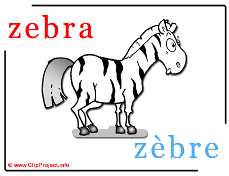 Zebra - zebre abc image dictionnaire anglais francais
