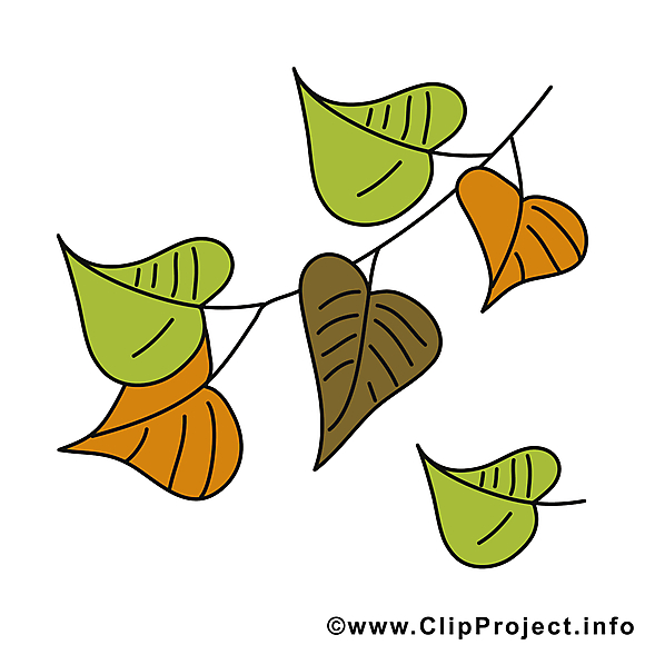 Chute des feuilles clipart gratuit – Automne images