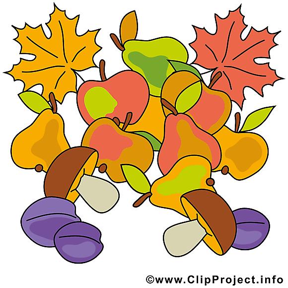 Fruits feuilles illustration – Automne images