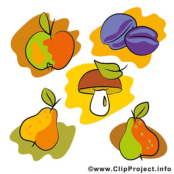 Fruits image gratuite – Automne clipart