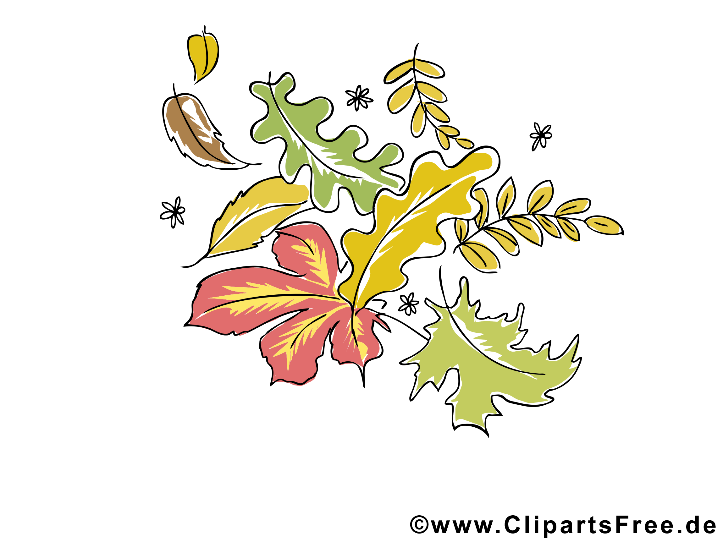 Image gratuite feuilles – Automne cliparts