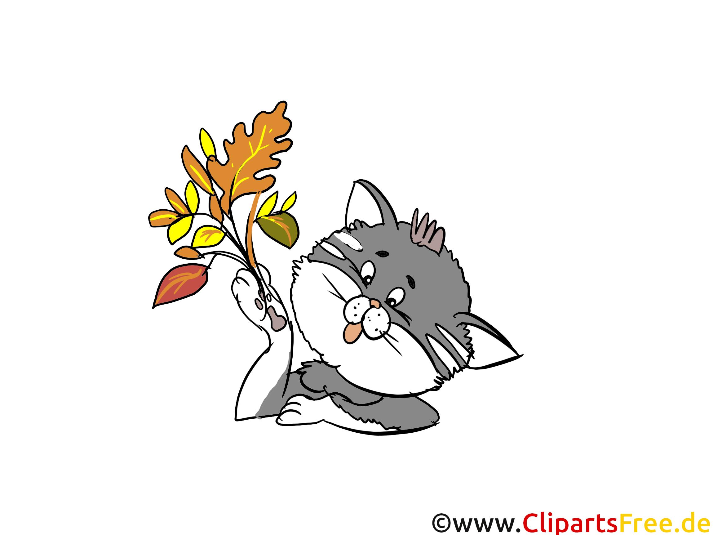 Images chat automne dessins gratuits automne dessin picture image graphic clip art - Telecharger image de chat gratuit ...