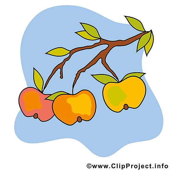 Pommes dessin – Automne cliparts à télécharger
