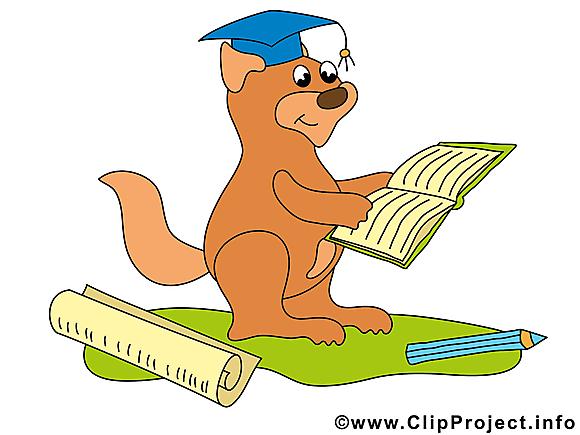 Écureuil image – Baccalauréat images cliparts