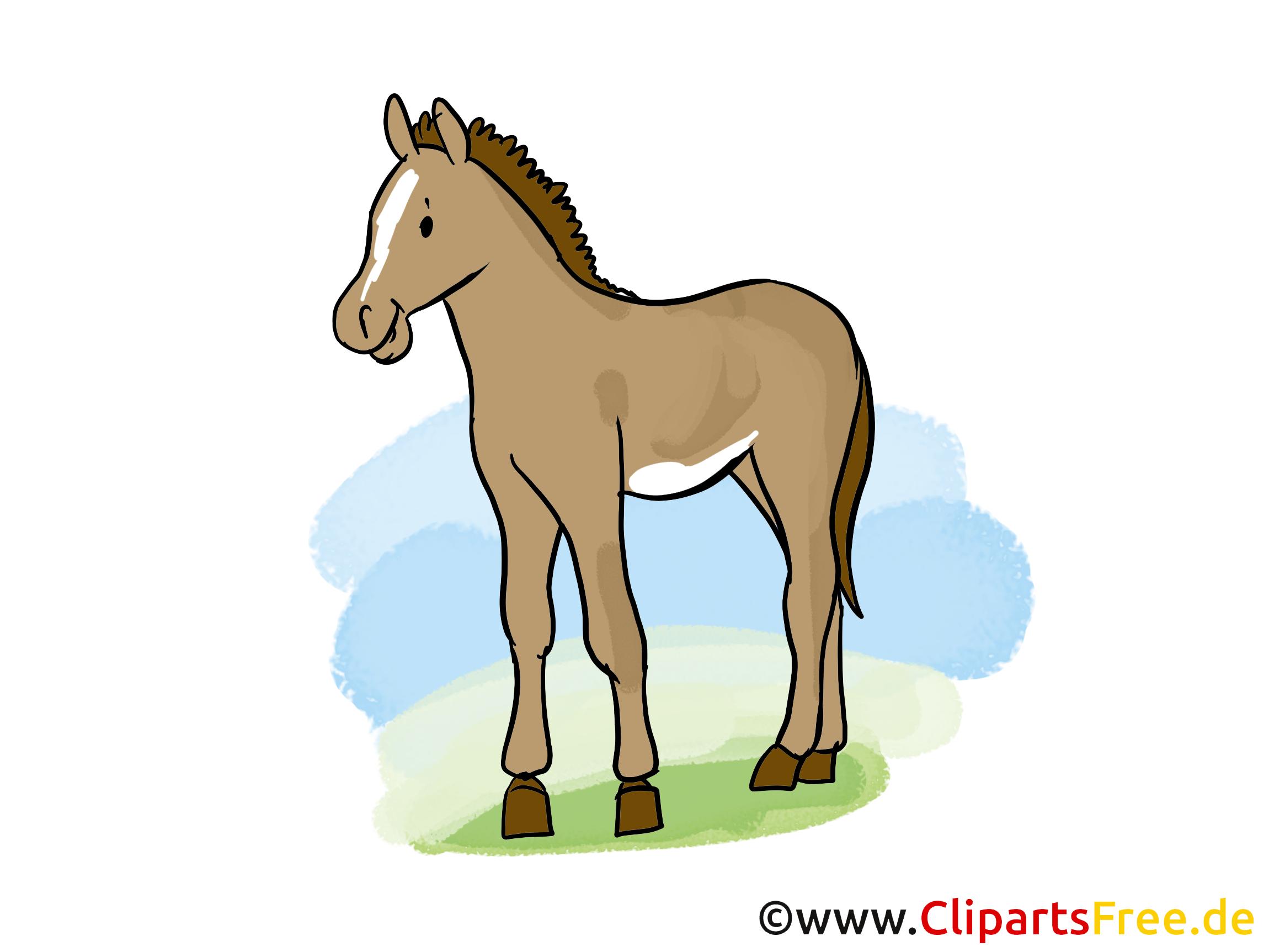 Cavale dessin à télécharger – Cheval images