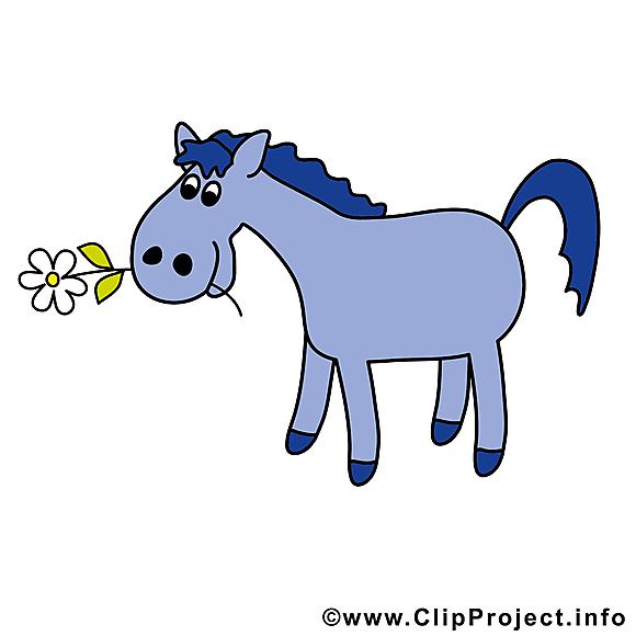 Cavale image gratuite – Cheval illustration