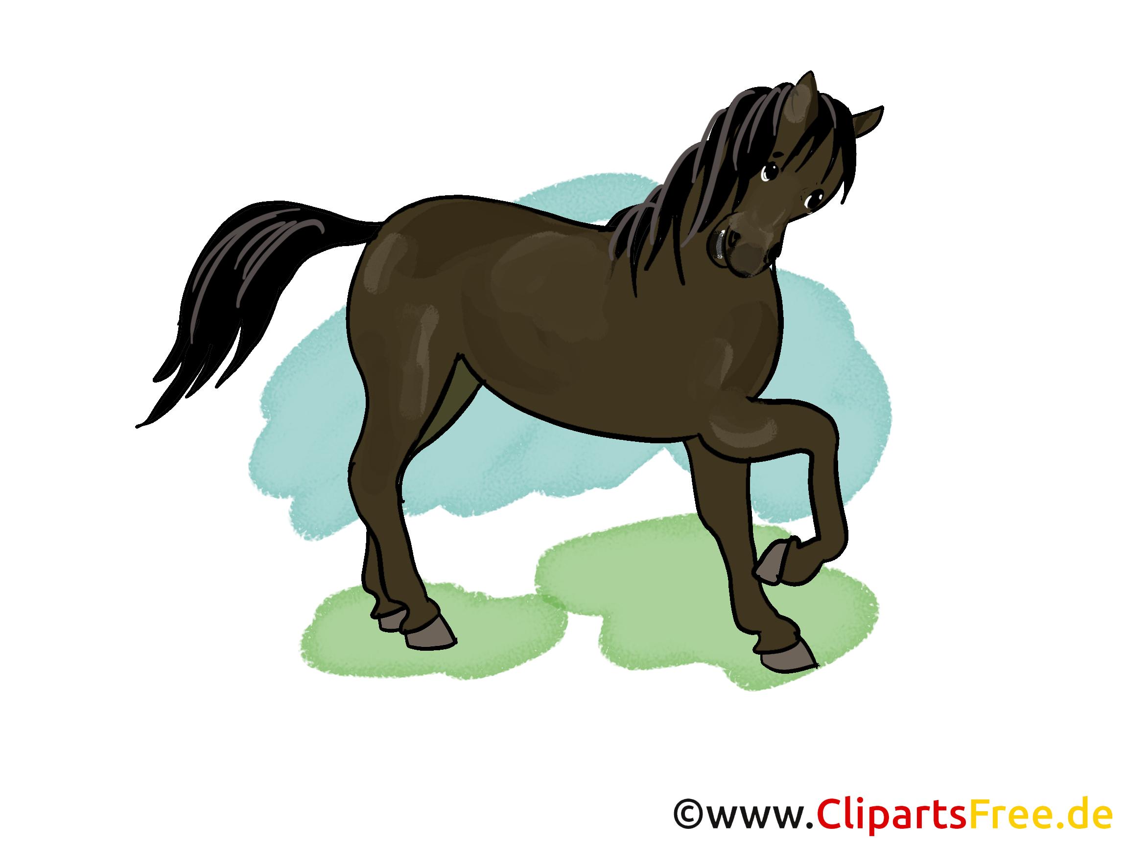 Images cheval dessins gratuits