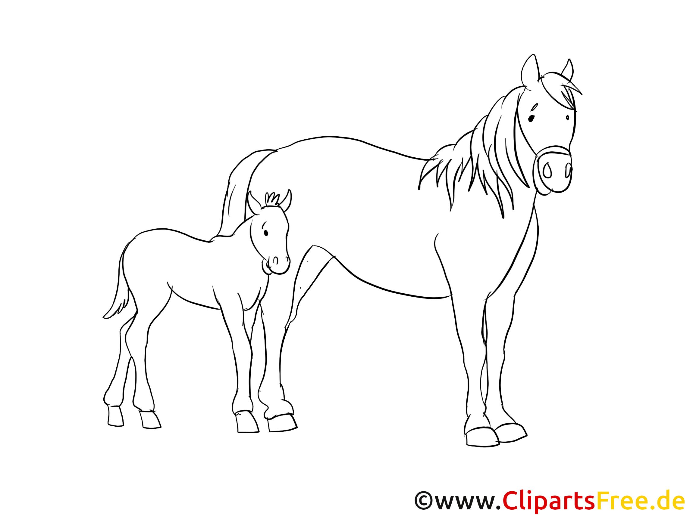 Poulain dessin à imprimer – Cheval clip arts gratuits