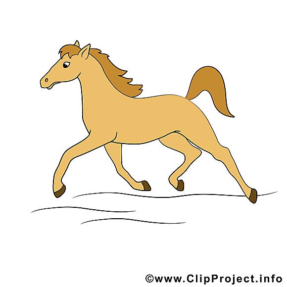 Trotte images – Cheval dessins gratuits