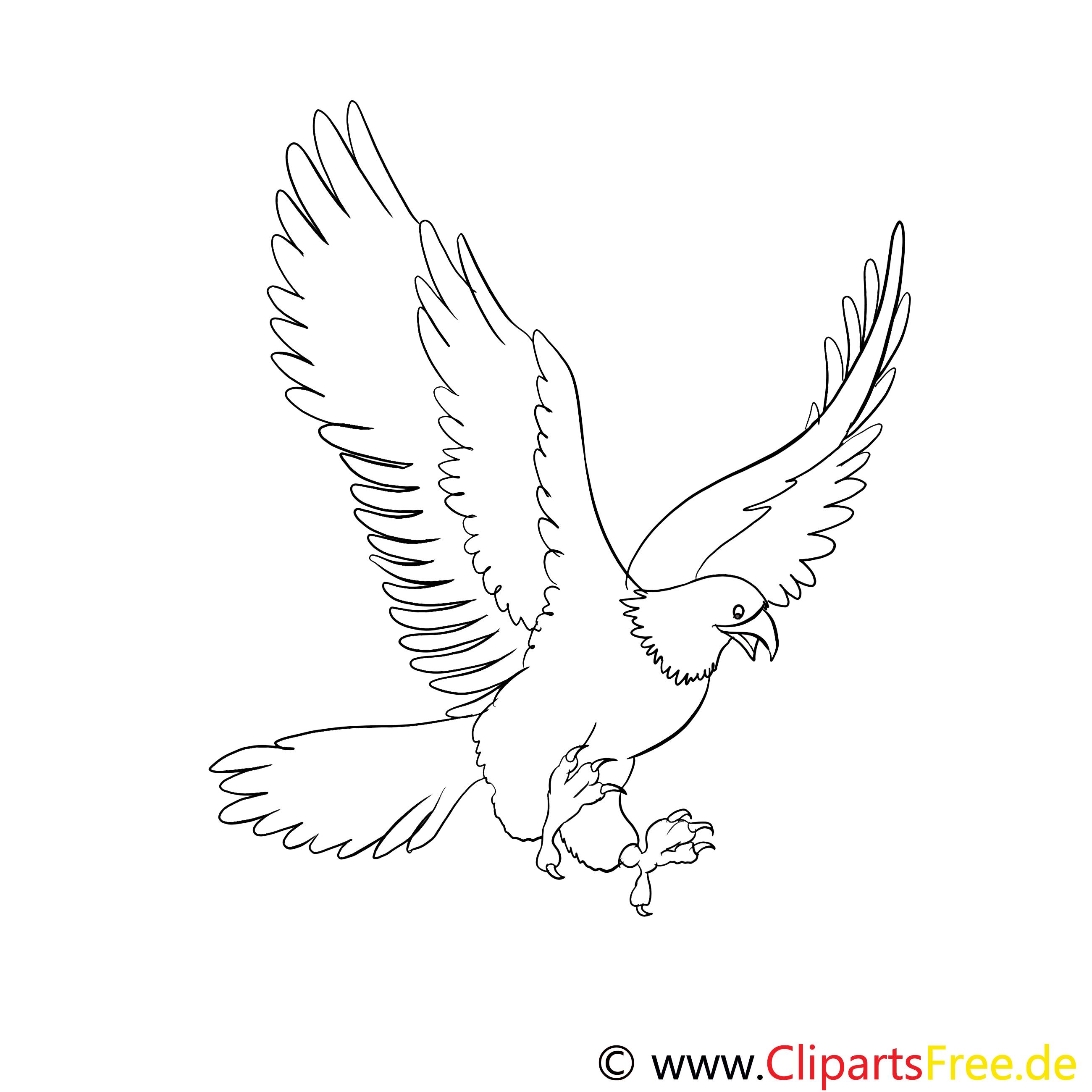 Aigle clipart gratuit – Animal à colorier