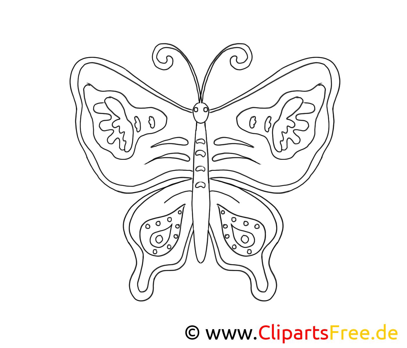 Coloriage papillon illustration – Animal à imprimer