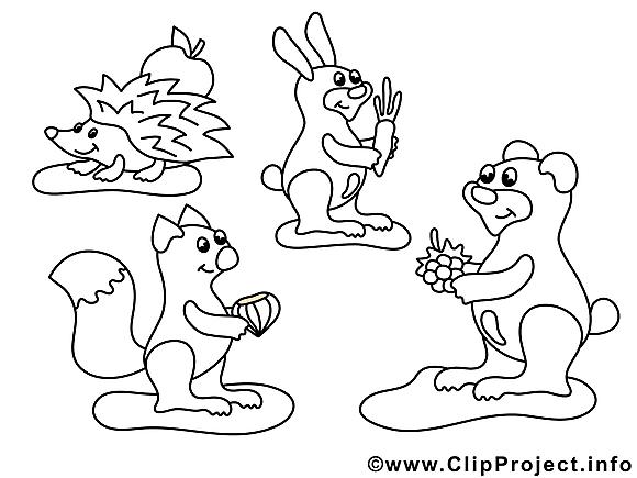 Forêt dessin gratuit – Animaux à colorier