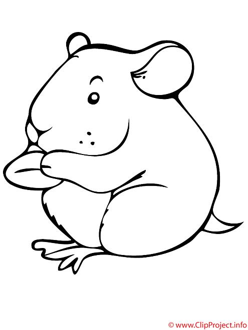 Le hamster mange coloriage