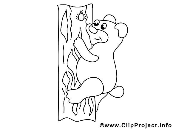 Ours dessin à télécharger – Animal à colorier