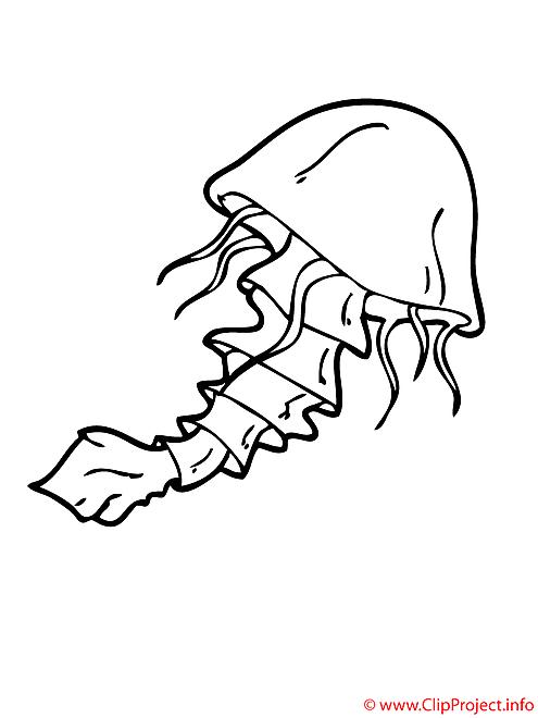 Meduse coloriage