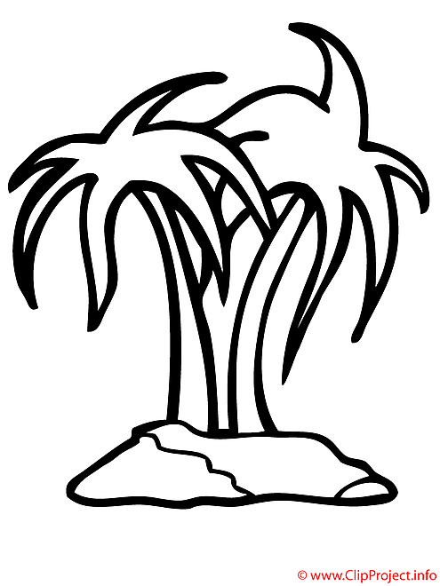 Palmier coloriage