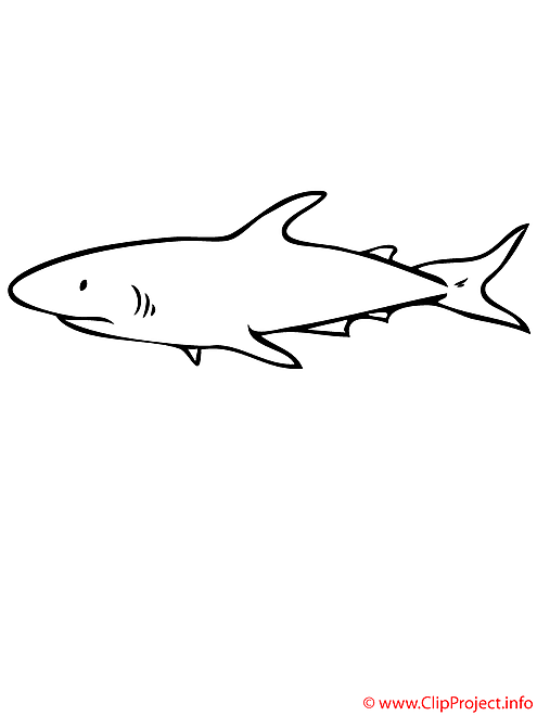 Requin coloriage