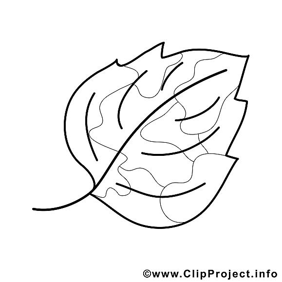 feuille clipart  automne dessins à colorier  automne