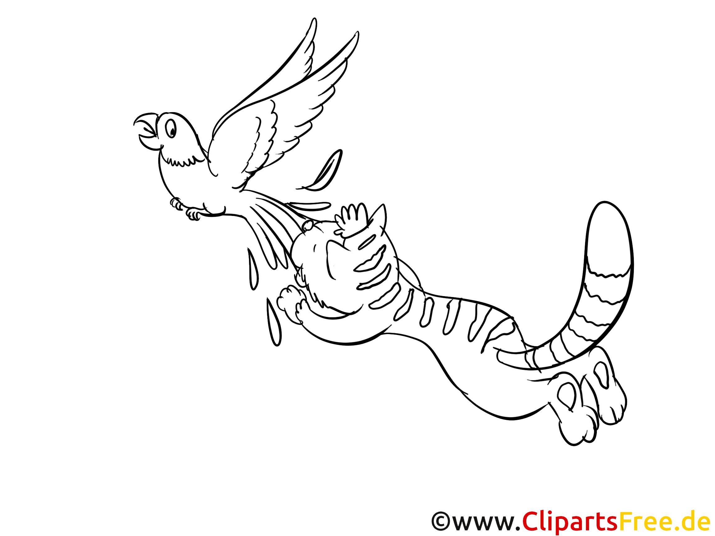 Perroquet image – Chats images à colorier