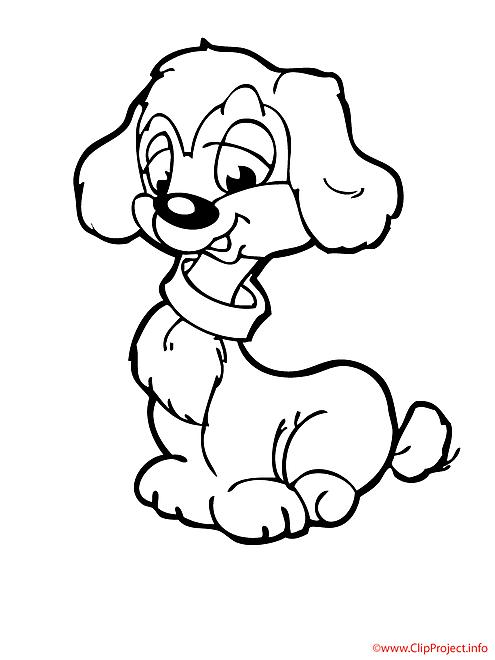 Caniche coloriage chiens coloriages dessin picture - Coloriage niche ...