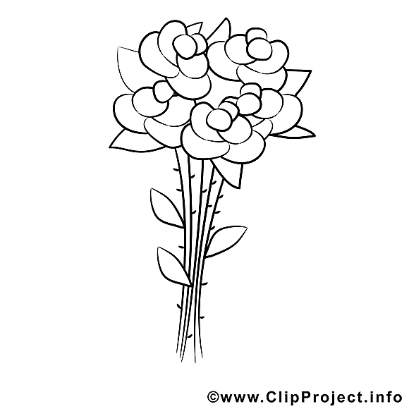 Roses image gratuite – Divers à colorier