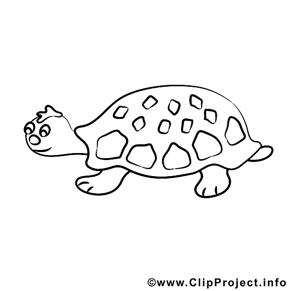 Tortue clipart – Divers dessins à colorier