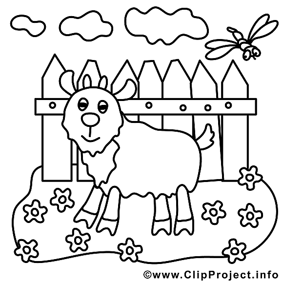 Bouc image – Coloriage campagne illustration