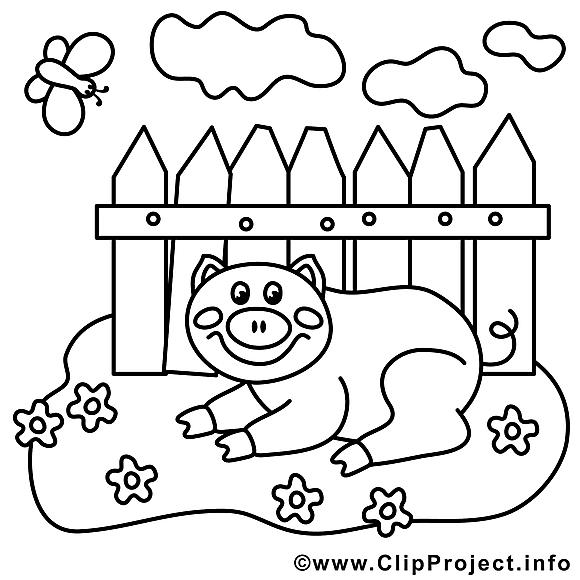 Cochon dessin – Coloriage campagne à télécharger