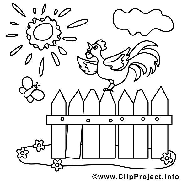 Coq image à télécharger – Campagne à colorier