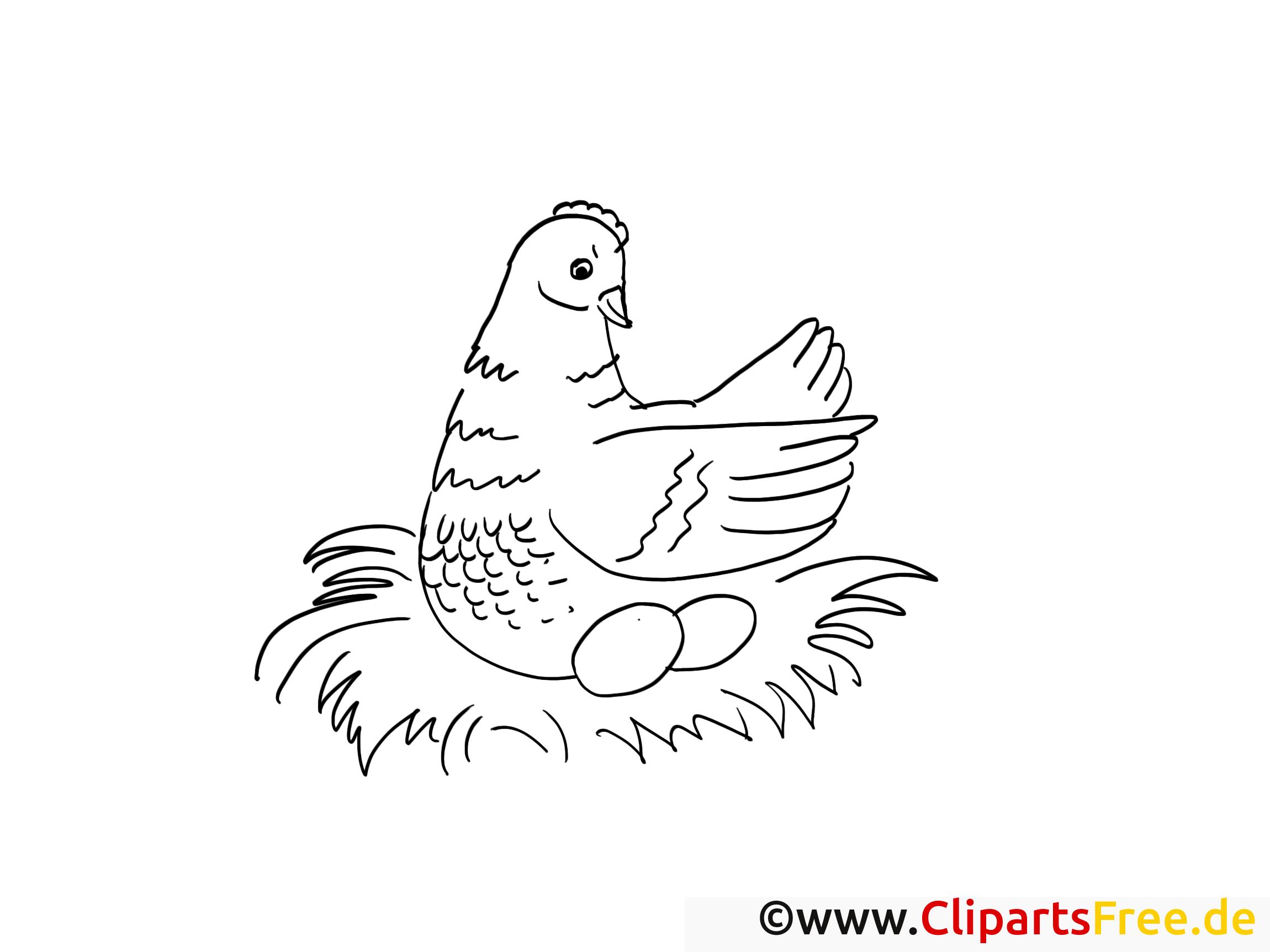 Poule images gratuites – Campagne à colorier