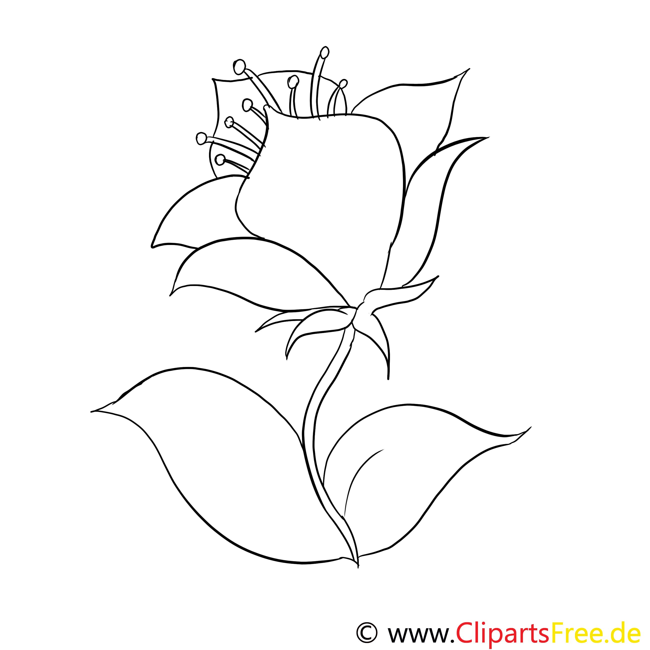 Clip arts fleurs à imprimer