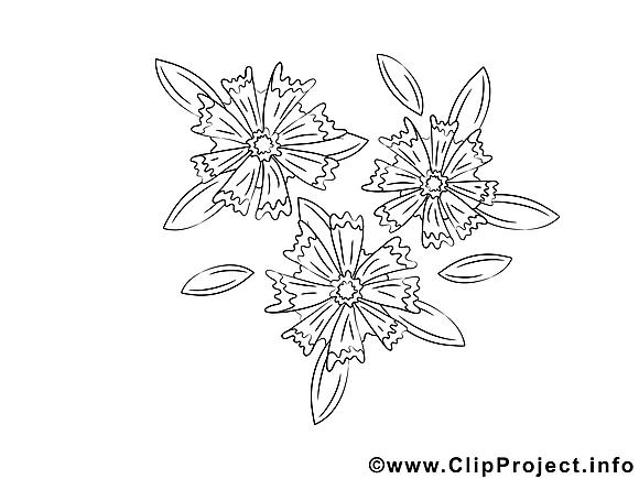 Coloriage fleurs illustration à télécharger