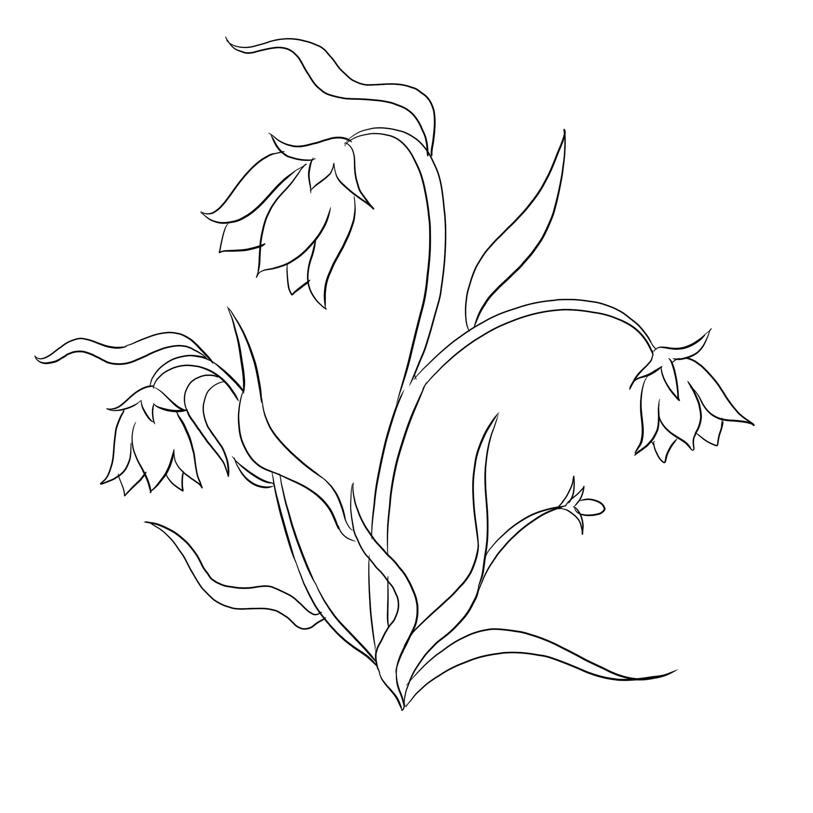 Floraison illustration – Fleurs à colorier
