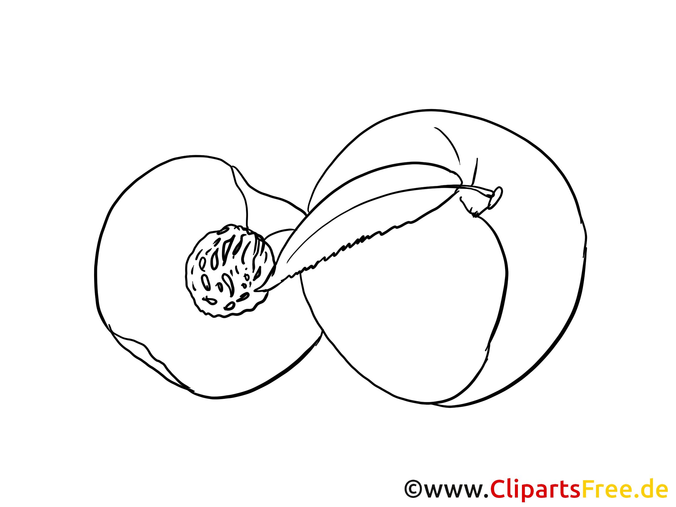 Peche Illustration Fruits A Imprimer Fruits Coloriages Dessin Picture Image Graphic Clip Art Telecharger Gratuit