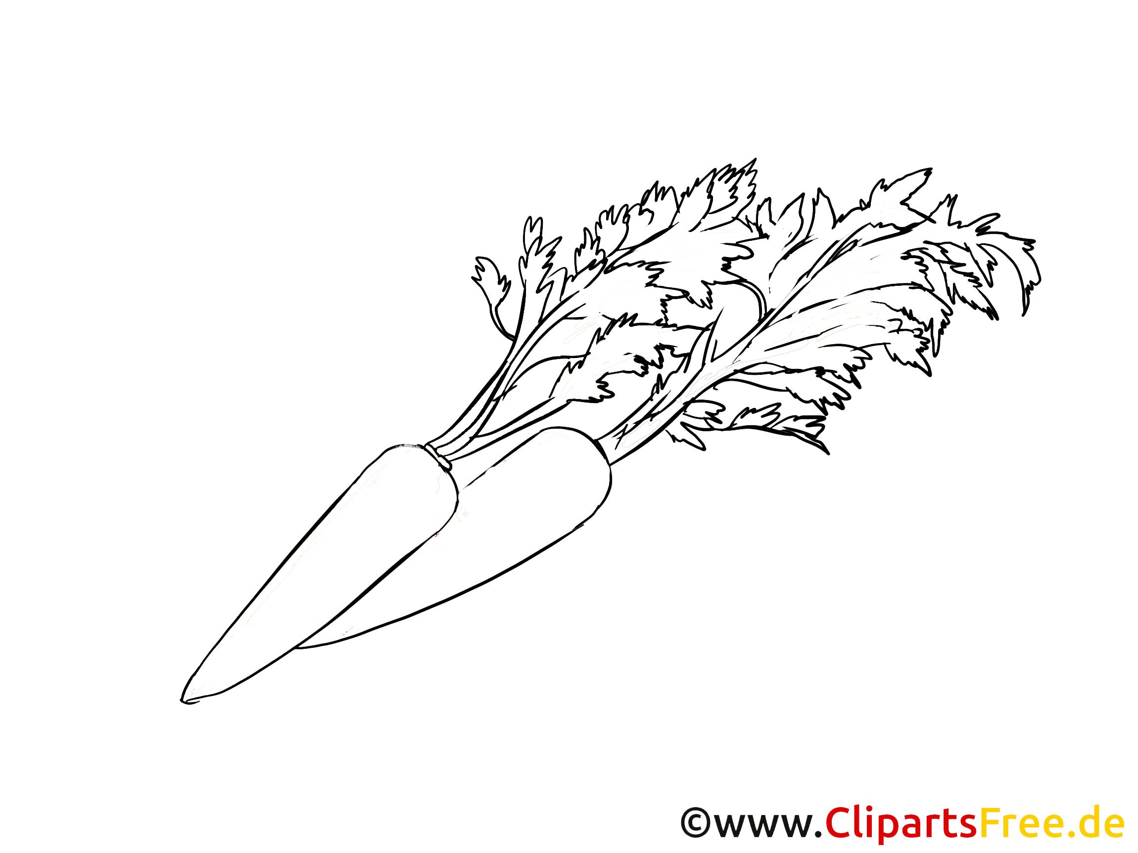 Carotte illustration – Légumes à colorier