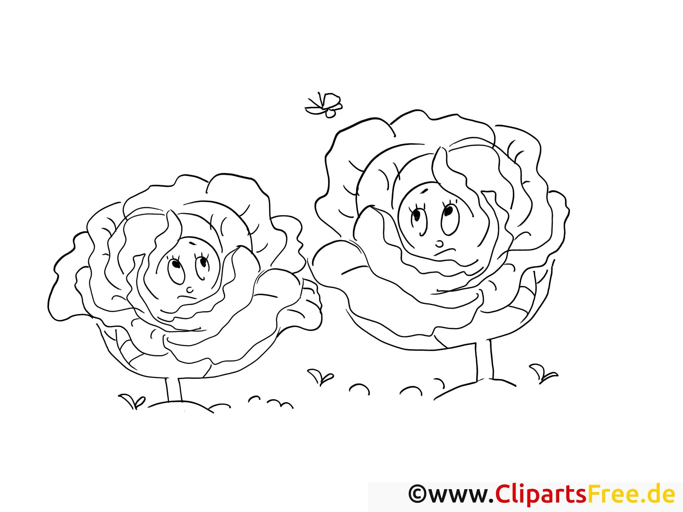 Légumes images gratuites – Choux à colorier
