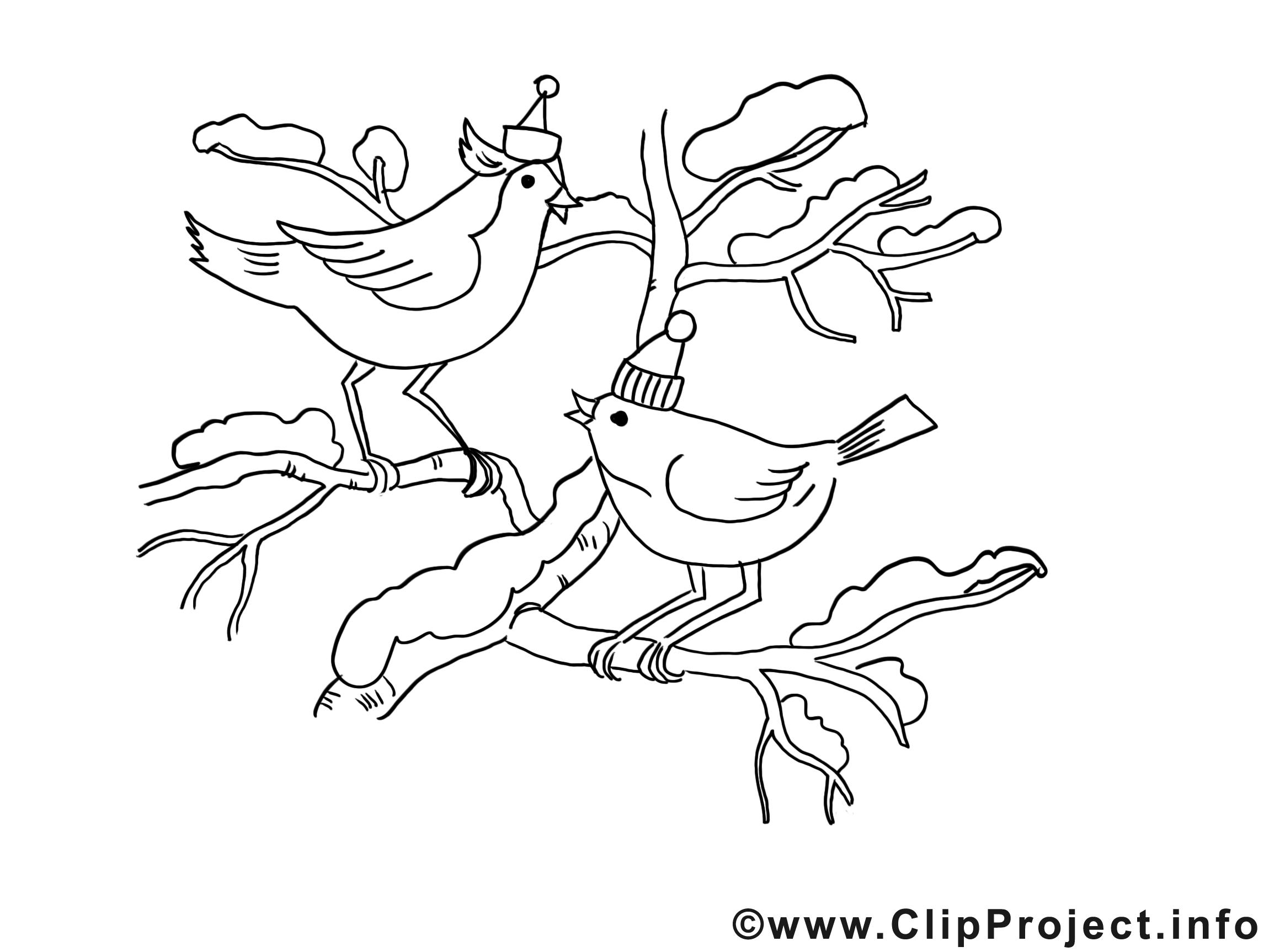 Oiseaux dessin – Coloriage noël à télécharger