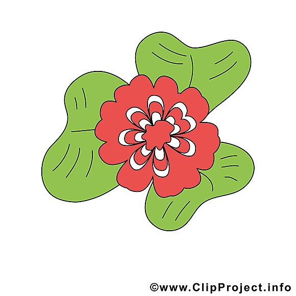 Fleur dessin à télécharger images