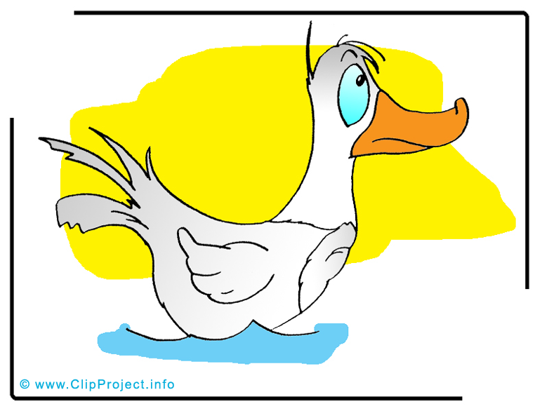 Canard clip arts gratuits – Ferme illustrations