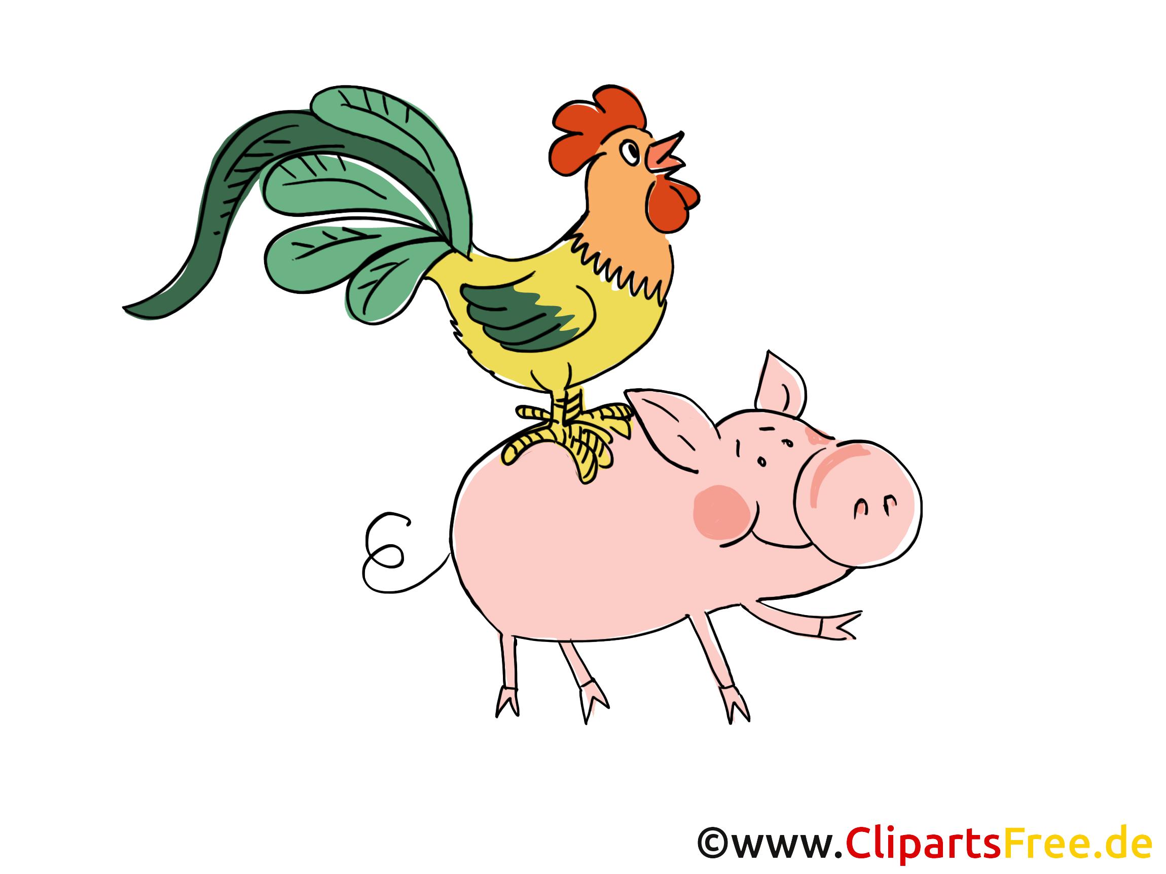 Cochon coq images – Ferme dessins gratuits