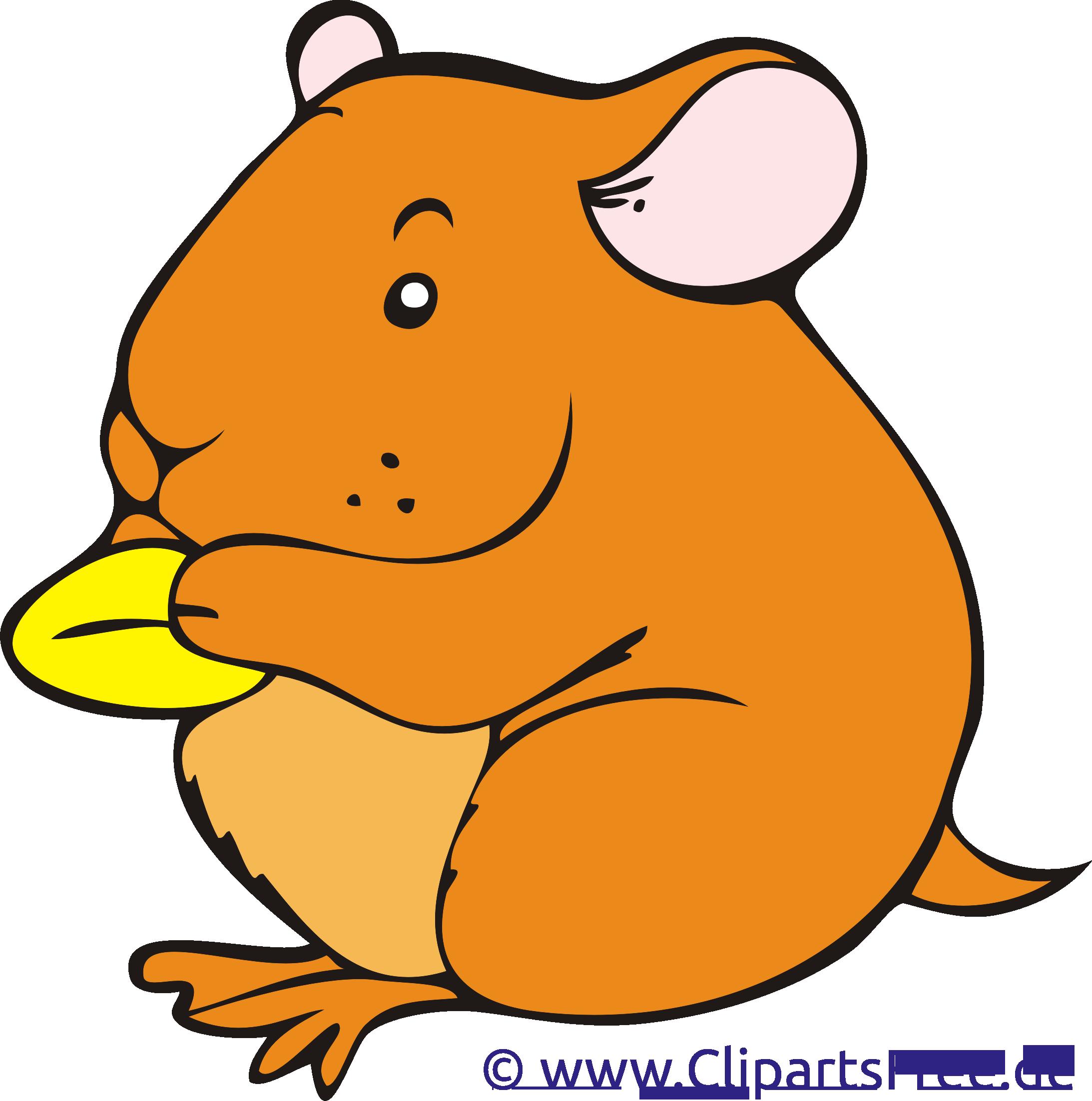 Hamster clip art gratuit – Ferme images