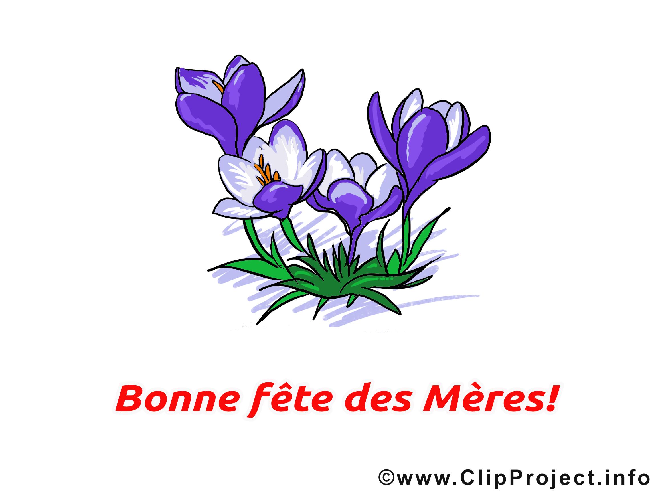 Clip art gratuit fleurs f te des m res dessin f te des m res clipart cartes virtuelles - Fete des meres fleurs ...