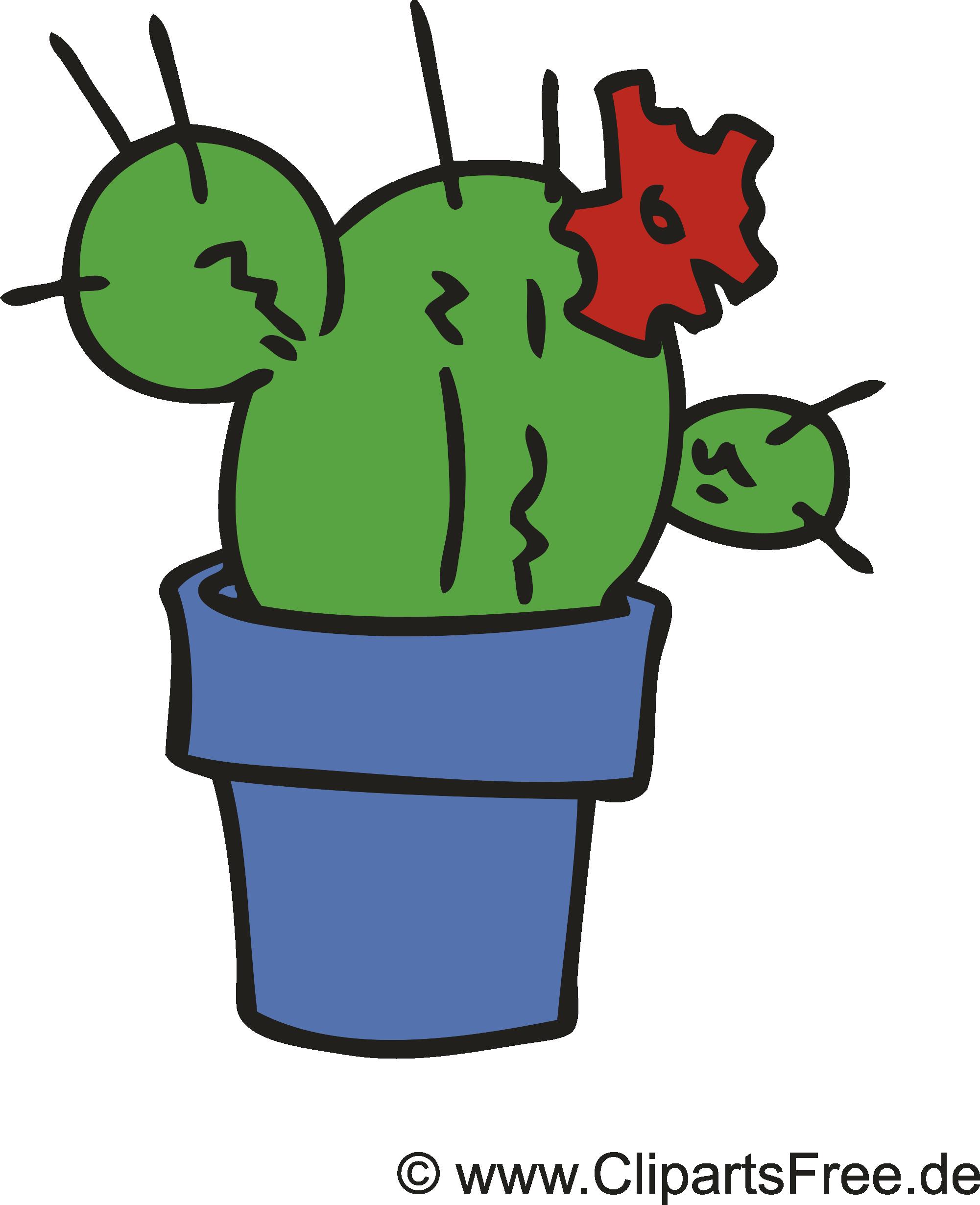 Cactus clipart gratuit – Fleurs images