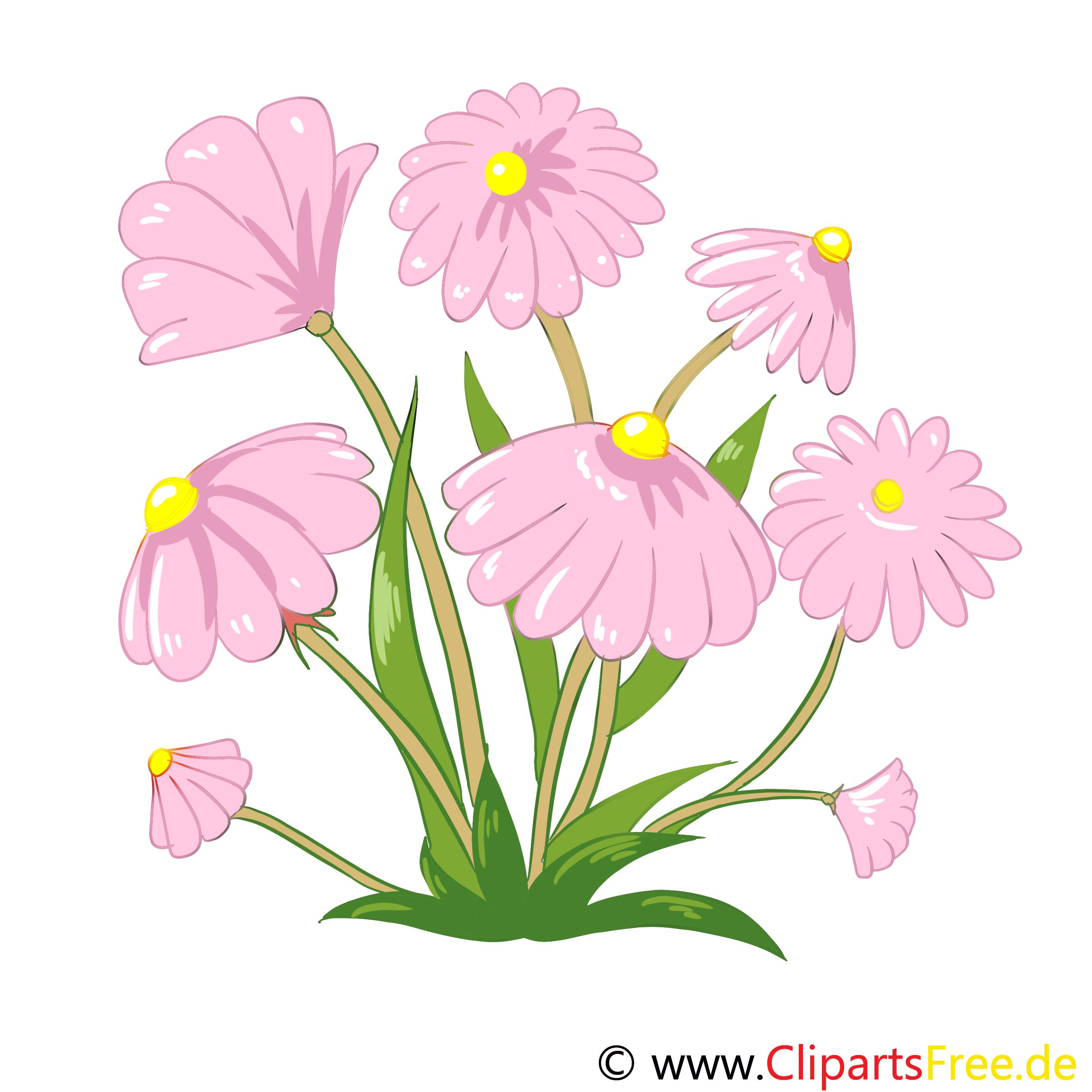 Champ de fleurs images gratuites – Fleurs clipart