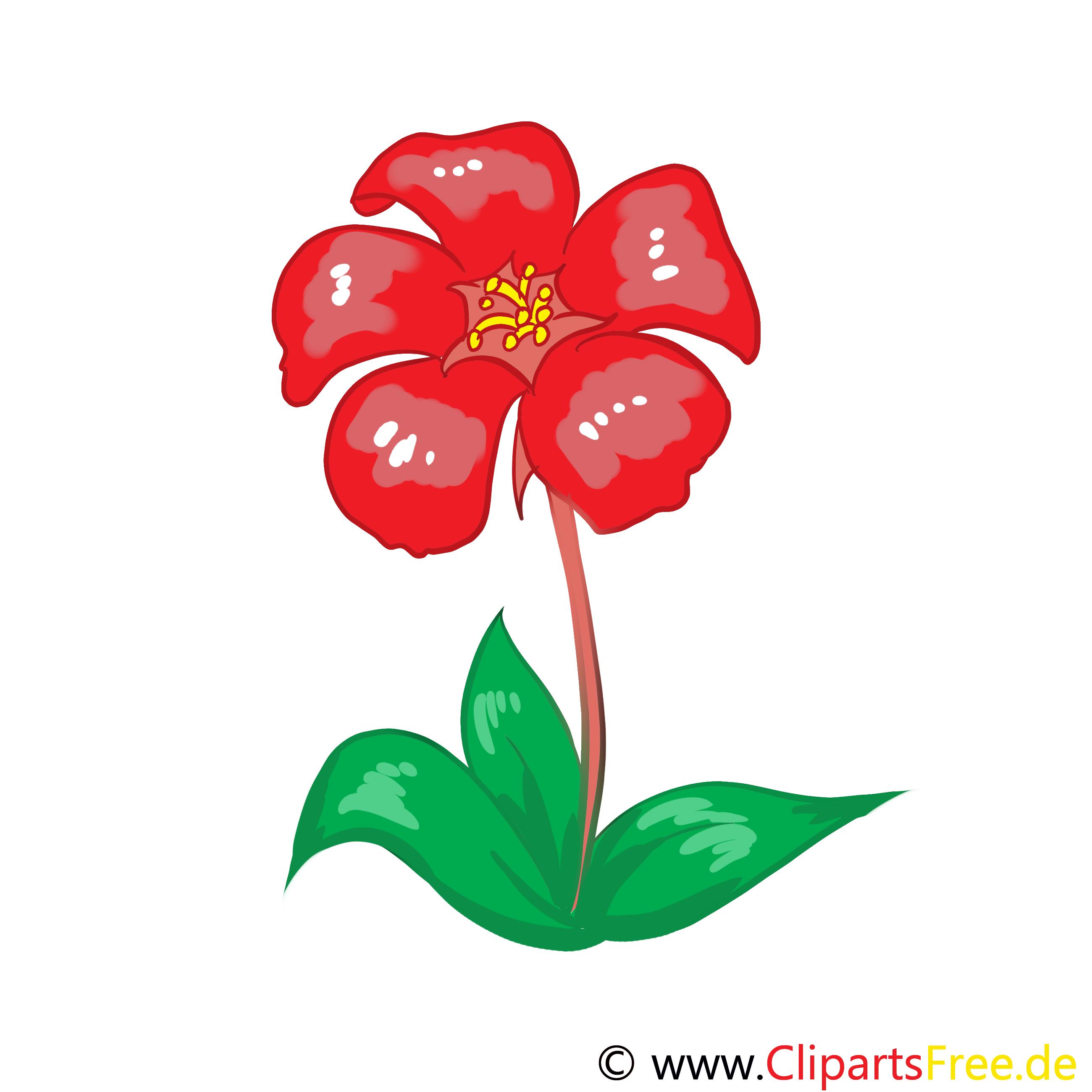 Dessin fleur rouge clip arts gratuits fleurs dessin picture image graphic clip art - Dessins fleur ...