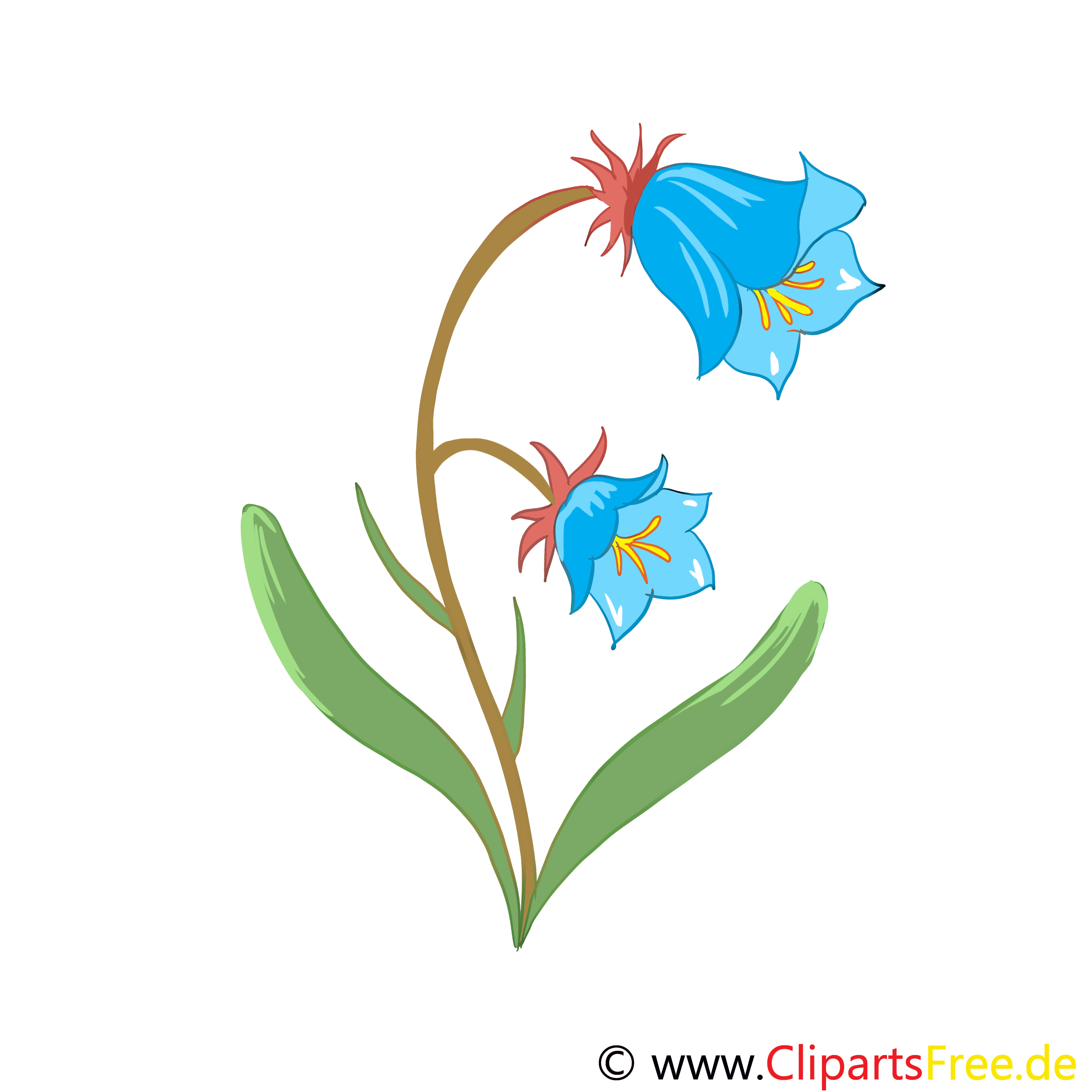 Dessin fleurs t l charger gratuit fleurs dessin picture image graphic clip art - Dessin a telecharger ...