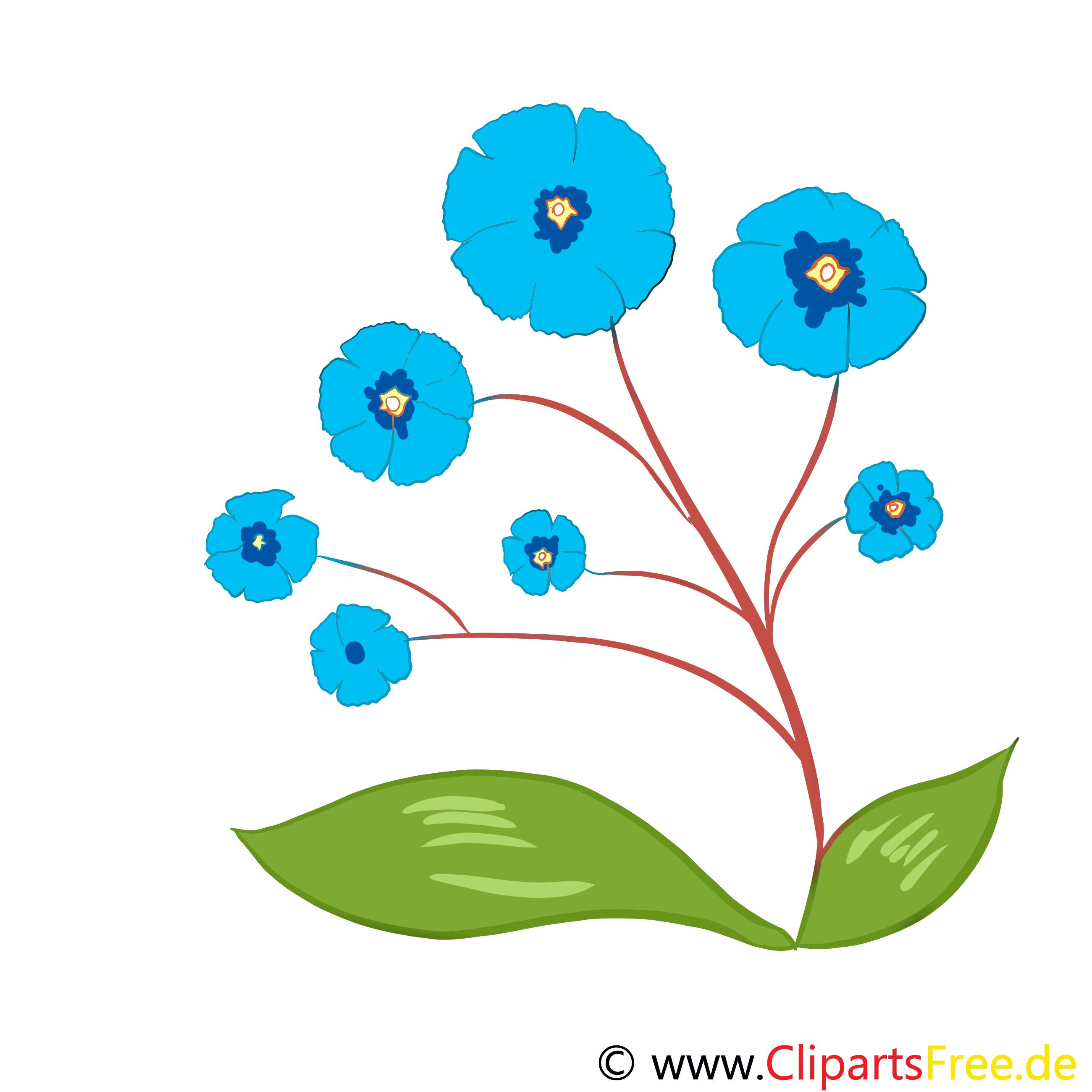 Images gratuites à télécharger fleurs clipart